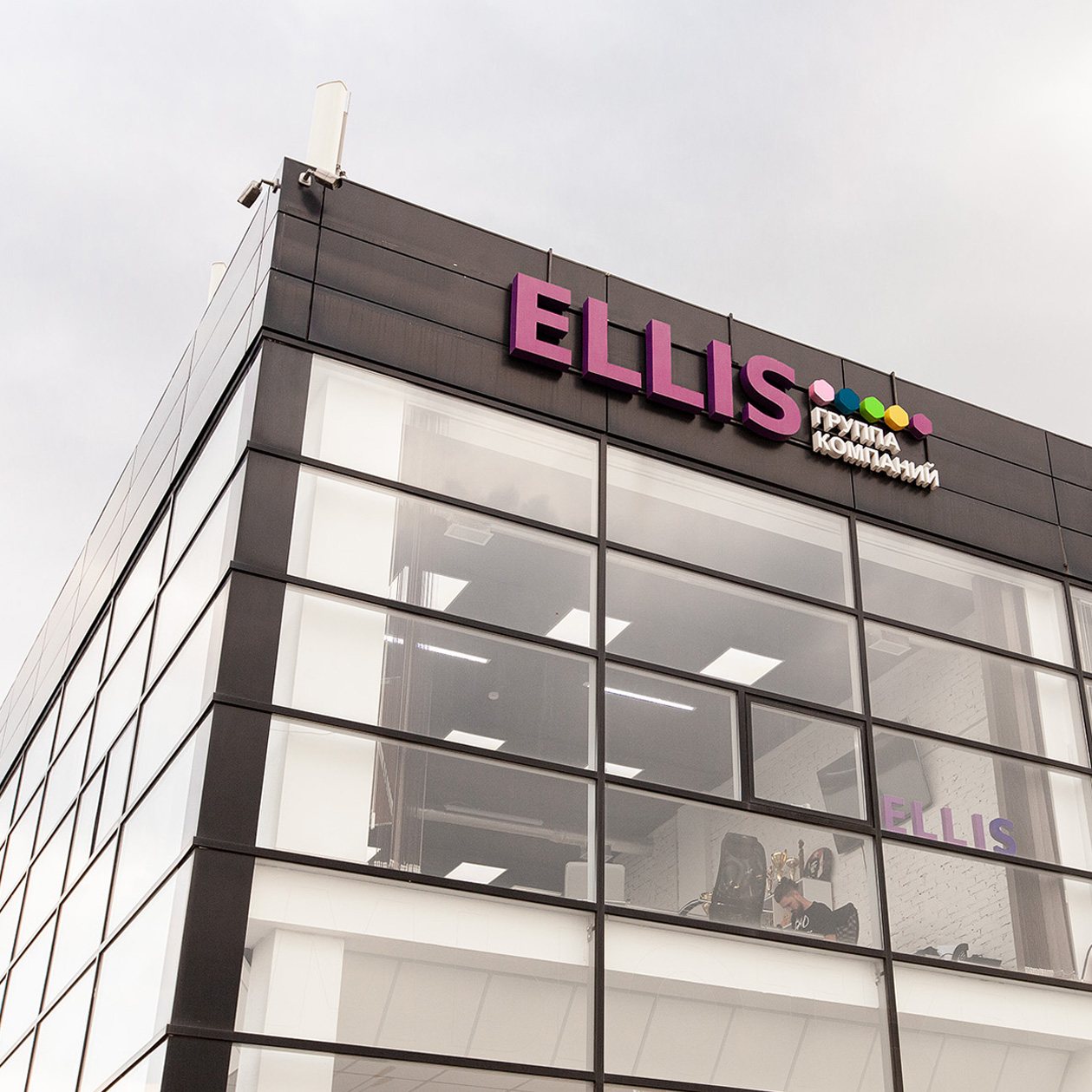 ELLIS_Office_WEB_